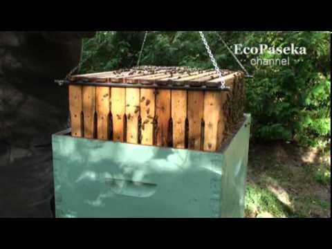 Эрудит ☆ купить книги по пчеловодству с доставкой. Тел. : ☎ (097) 975-77-00 | (050) 589-77-00. Лучшая пчеловодческая литература, все о разведении пчел.