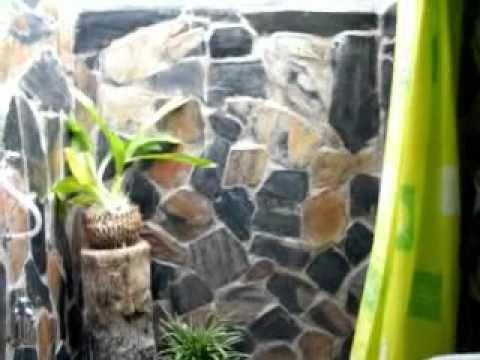 ที่พักวังน้ำเขียว,บ้านไม้เคียงภู,เที่ยววังน้ำเขียว,080-9002112,เที่ยวเขาใหญ่