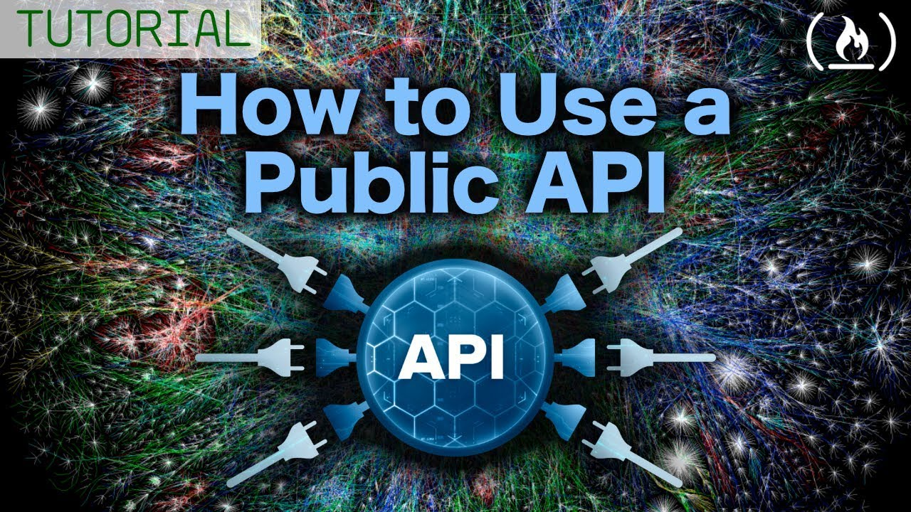 Using a Public API - Tutorial for Beginners