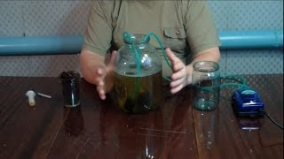 Аэрированный компостный чай. Готовим качественный ЭМ препарат(Оборудование для приготовления АКЧ можно купить тут: http://mig-avto.com/22-stimulyatory-rosta Подробнее в моей статье: http://svoit..., 2014-01-13T08:09:34.000Z)