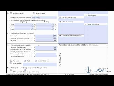 form 1065 instructions 2016  Learn How to Fill the Form k 133 Schedule K-133 - YouTube