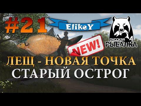 Лещ - Новая Точка 2.0! • Фарм серебра • Фидерная ловля • Старый Острог • Русская Рыбалка 4 #21