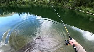 Любительская спиннинг рыбалка на втором озере Кольсай 16 06 20 Fishing at the Kolsay lakes 4K POV