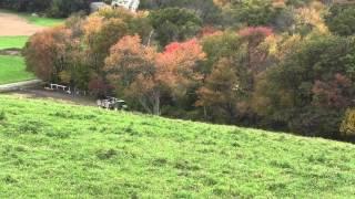 Farm Hay Rides - Crescent Farms Haverhill MA
