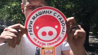 В Тольятти будут парковки! Накажем свиней!