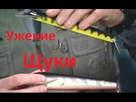 диалоги о рыбалке щука на спиннинг осенью