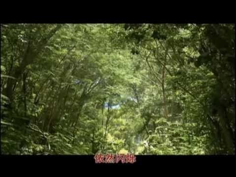 秦永-韩宝仪-龙飘飘  -  水长流-我在你左右-等15首 联唱