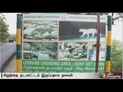 Vehicles banned in Sathyamangalam forest area due to roaming leopards