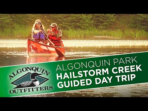 Algonquin Park Hailstorm Creek, Guided Day Trip - Algonquin Outfitters