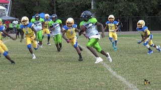 North Tampa Rams vs Lake Whales Seahawks 12U Highlights