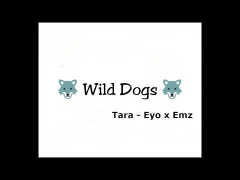 Tara - Wild Dogs