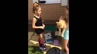 Танец с котом. День рождения кота. Анфиса