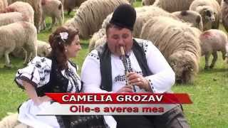 Cameliagrozav Oile-s averea mea.mp3