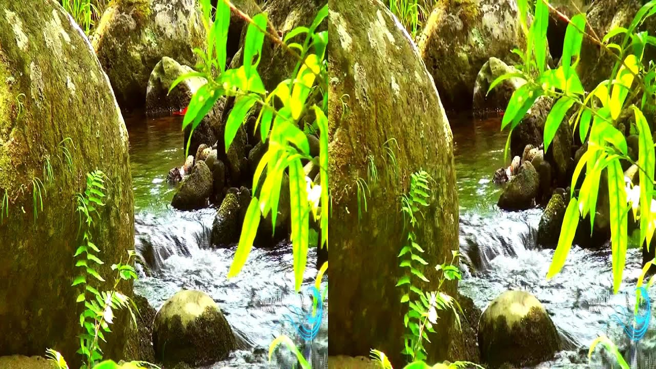 Hawaii S Nature In 3d Yt3d 3d Nature Youtube