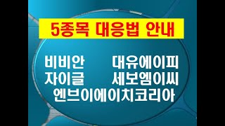 [5종목대응법] 비비안 대유에이피 자이글 세보엠이씨 엔…