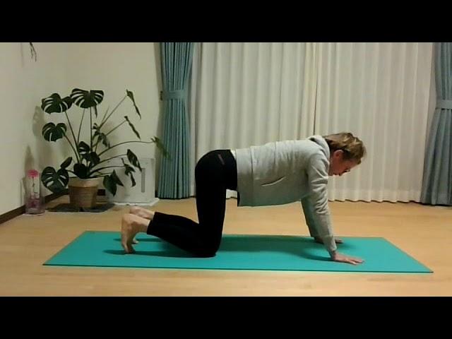 English yoga lesson: Your center line (中心線について)