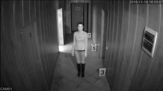 Видеокамера Tigris Thl-d20 коридор ночь