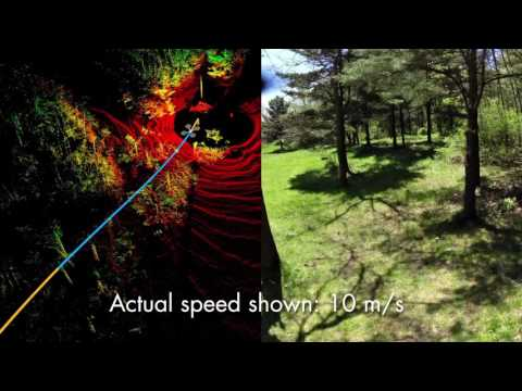 Collision Avoidance in Natural Environment without GPS