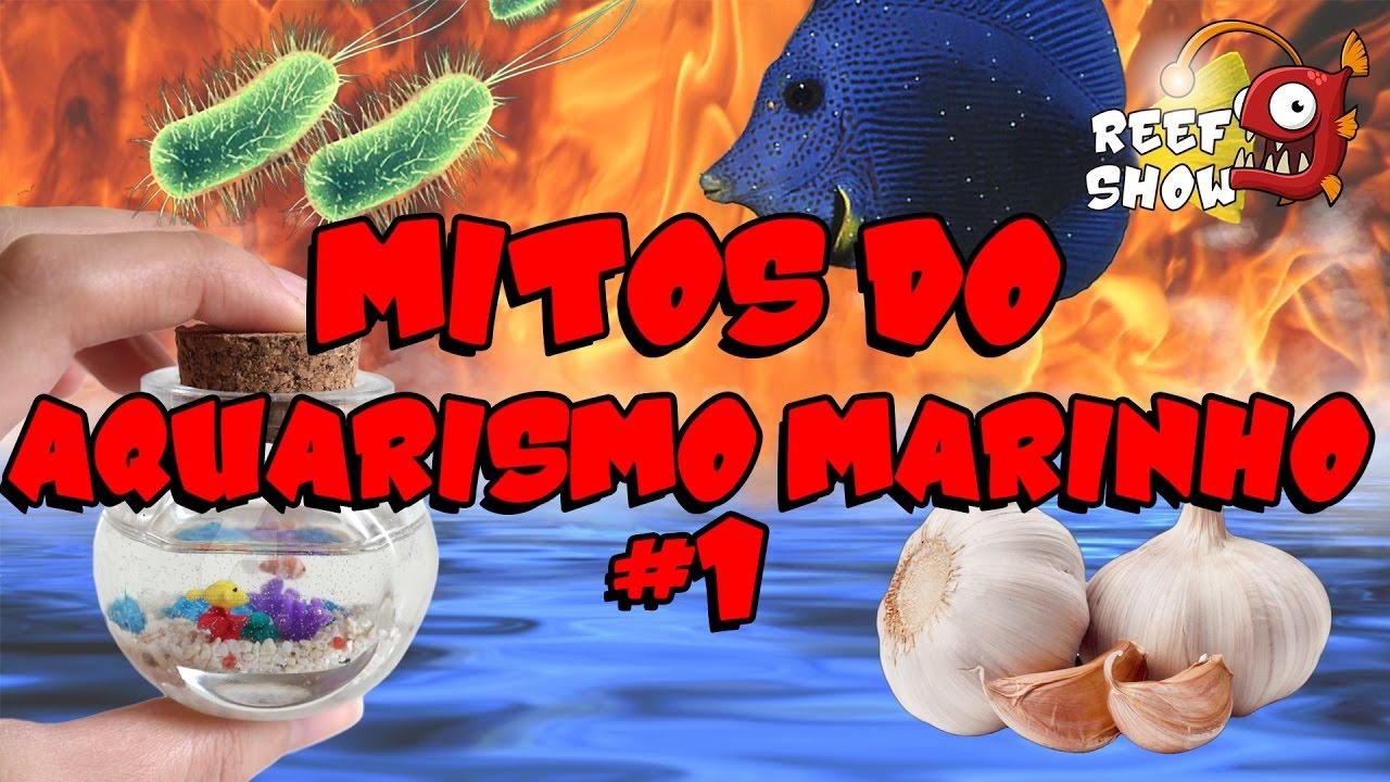 Reef Show #10 - Mitos do Aquarismo Marinho (1) - Aquário Marinho
