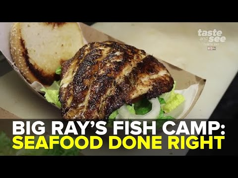 Big Ray's Fish Camp In South Tampa Offers Seafood Done Right | Taste And See Tampa Bay