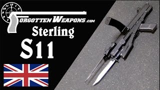 Sterling S11: Donkey in a Thoroughbred Race