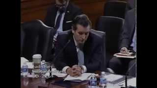 Sen. Cruz on the Effects of the Senate Democrats
