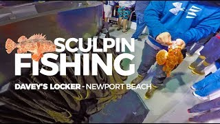 [Catch & Cook] One Stop Night Time Sculpin Fishing Newport Beach