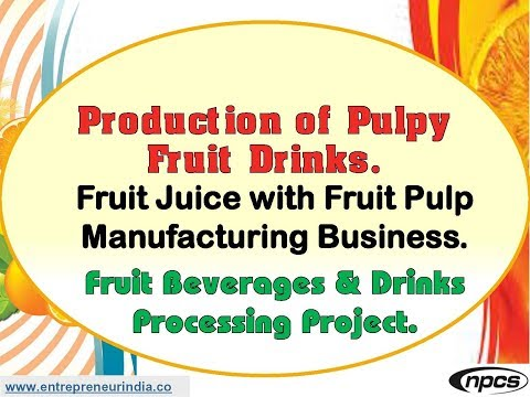 Production of Pulpy Fruit Drinks. Fruit Juice with Fruit Pulp Manufacturing Business.