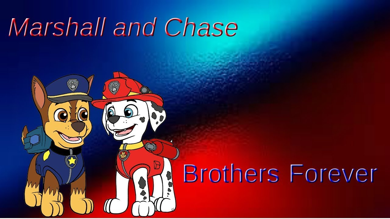 Brothers Marshall and Chase by Flint The wolf Furry