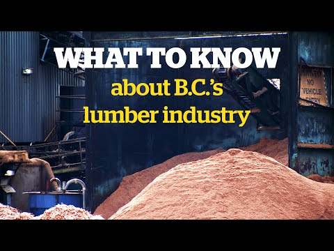 Why B.C.'s Forestry Industry Is Facing A Downturn