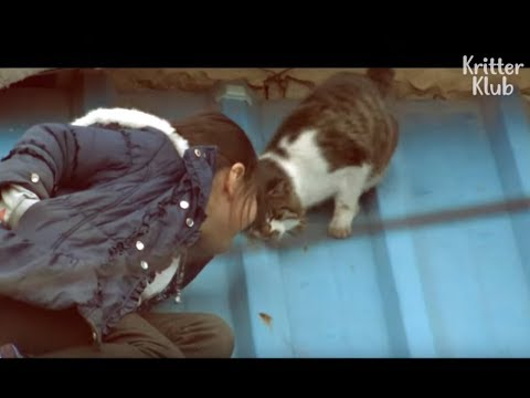 Girl Stood By Helpless Cat For 3 Years.. And The Tearful Rescue | Kritter Klub