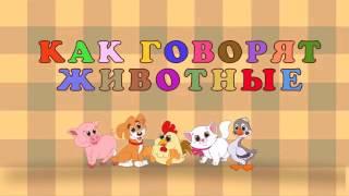 Видео для детей Песенка про домашних животных.