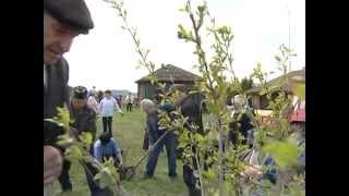 Вишневый сад в Уральской деревне Шокурово.mpg