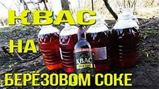 БЕРЁЗОВЫЙ сок с Лидским квасом приготовление/ Рецепт берёзового кваса
