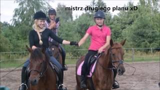Stadnina koni Victor - Wspomnienia z obozu jeździeckiego      2016  