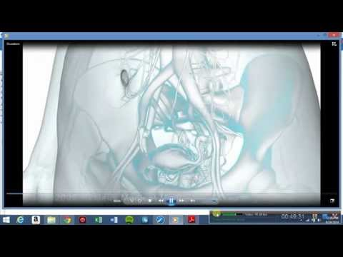 Part 2 of 2 Lecture Anatomy-Physiology APHa. Chapter 1