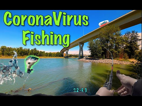 Bow River - CornaVirus Isolation - River Fishing
