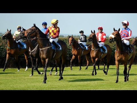 The Top 10 Myths About Horse Racing