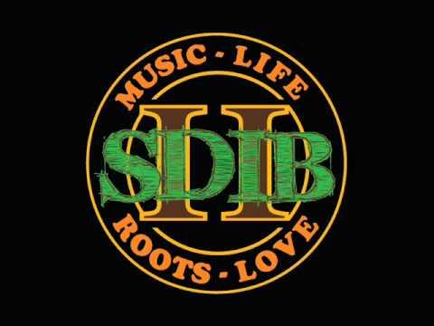 SDIB - Light It Up