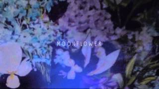 "Plini - ""MOONFLOWER"" - (2012)"