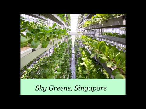 Vertical farming - happening now!