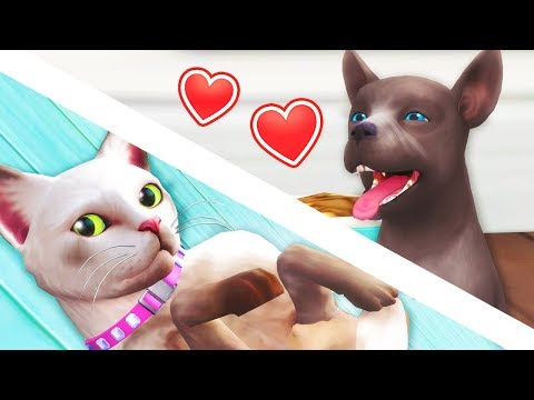 NEW PUPPY!!! // The Sims 4: Cats & Dogs #5