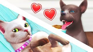 new puppy the sims 4 cats dogs 5