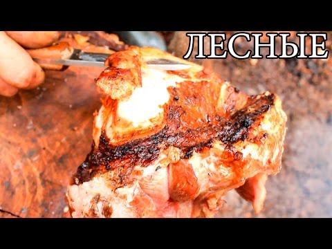 Мясо на углях   Мясо на костре - Bushcraft Cooking Meat