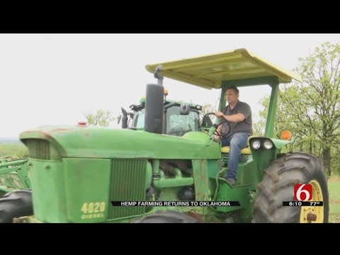 Oklahoma Farmers Eager To Grow Hemp