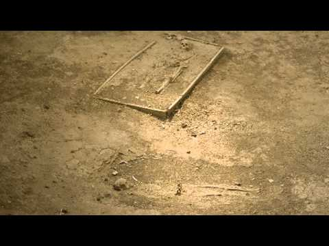 "Largest Discovery in Panama ""El Dorado"" Archaeological Site"