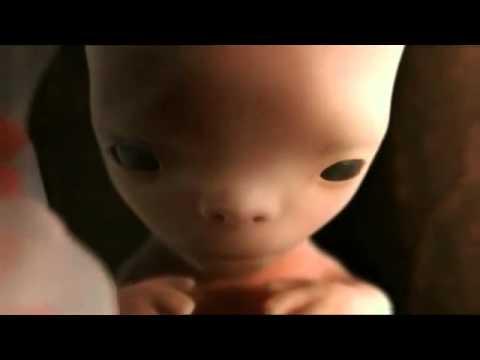 [F1kute.tk] SINH HỌc 9 - quá trình sinh sản của con người
