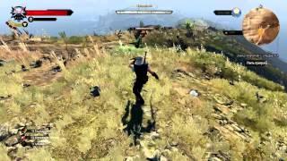 The Witcher 3: Wild Hunt прохождение боссов : 28. Покаянник