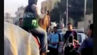 سعوديه ترقص على الحصان في مصر اغراء واثاره
