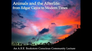 Animals and the Afterlife with Jennie Taylor Martin